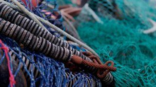 年収 マグロ 漁師