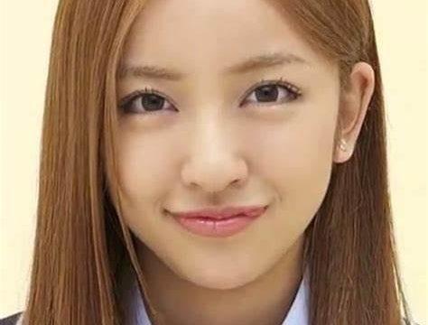 板野友美のwikiプロフィール