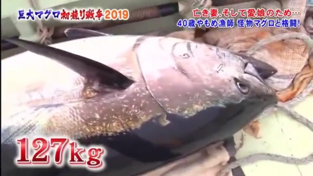 一本釣り 値段 マグロ